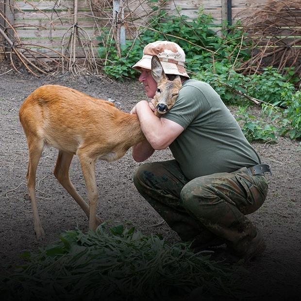 Я працюю зоологом у Межигір'ї — Звірі у місті на The Village Україна