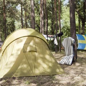 Camp Sweden: Шведские болельщики в кемпинге на Трухановом острове — Ситуація на The Village Україна