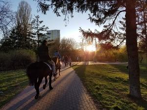 Гід парками Києва (Частина 2)