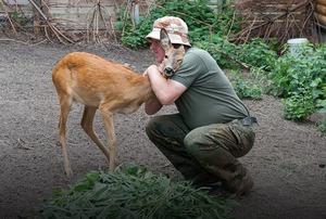 Я працюю зоологом у Межигір'ї
