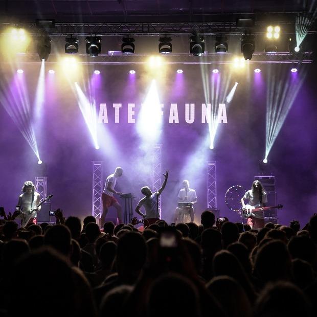 Останній концерт літа: Latexfauna зібрала повний ЮБК