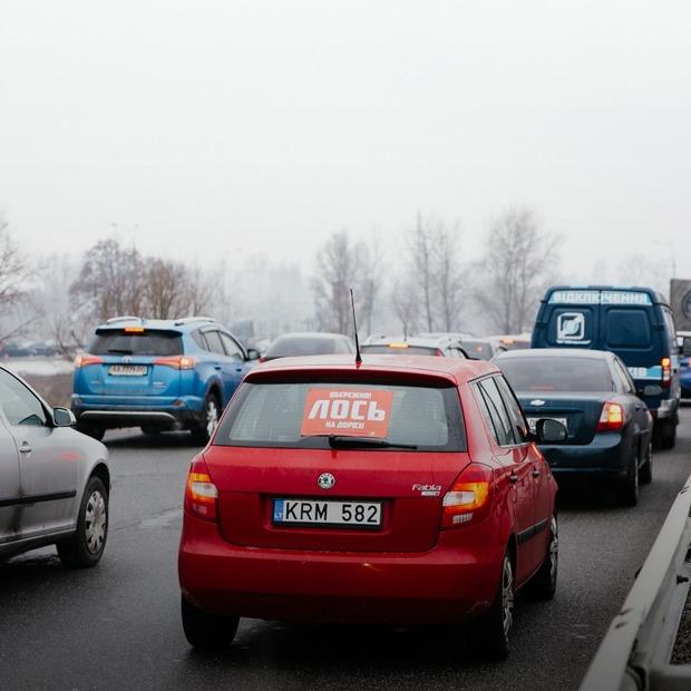 «Обережно! Лось на дорозі»: хто і навіщо полює на київських порушників — Фоторепортаж на The Village Україна
