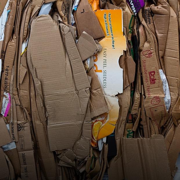 «Це ж сміття!»: як я сортувала відходи