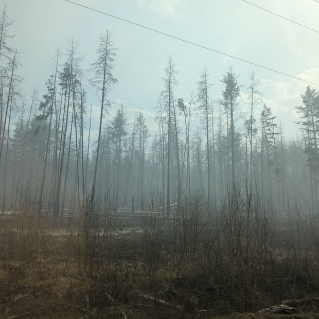 Чорнобильський ліс продовжує горіти: кадри з села поблизу Чорнобиля — Фоторепортаж на The Village Україна
