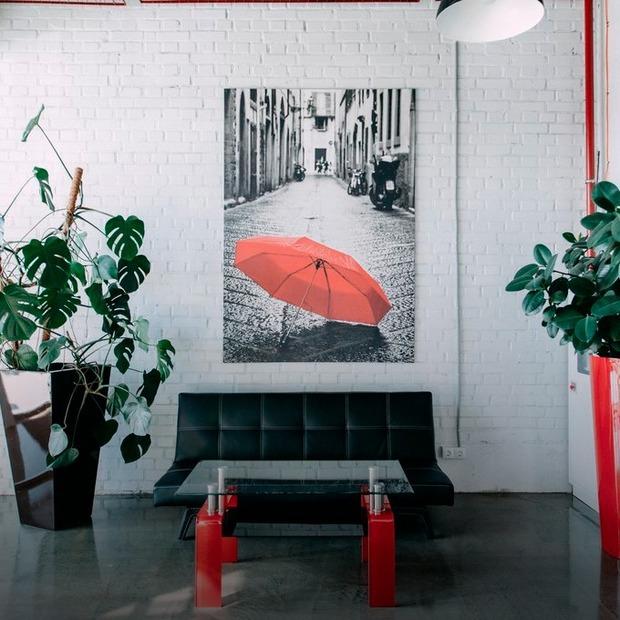 Одна з найбільших фотостудій Європи, кімната для сну та контейнер: 8 найкращих офісів 2017 року