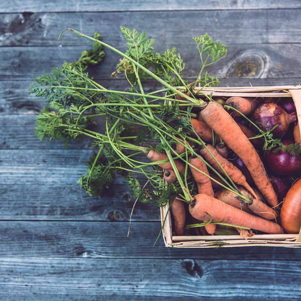 Де купувати овочі та фрукти від локальних фермерів — Гід The Village на The Village Україна