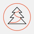 На Софійській площі встановлюють новорічну ялинку