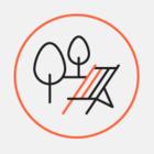 Яким буде кафе «Скворечник» у Гідропарку