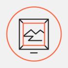 Дизайнери створили альтернативний логотип Києва. Це каштановий лист