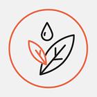 Авоськи та бамбукові щітки в офлайн-магазині від «України без сміття»