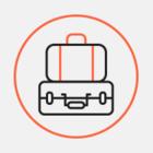 Правила перевезення багажу на борту SkyUp