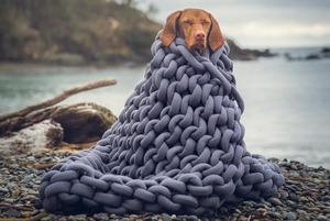 Не вилазити з-під ковдри: 8 українських брендів текстилю для дому