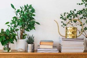 Як зробити повітря в домі ідеальним