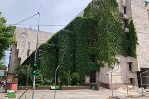 Будинок із квітами на Січових може стати офісним центром висотою 9-поверхівки. Що відбувається?