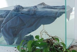 Одяг з екологічного майбутнього – який він?