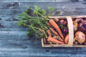 Де купувати овочі та фрукти від локальних фермерів