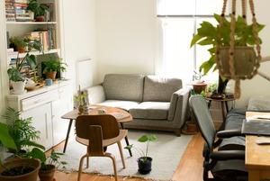 Білий дім: 5 правил монохромного інтер'єру