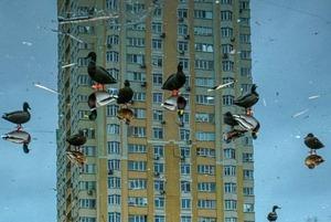 Камера спостереження. Найкращі фото «Української вуличної фотографії» за версією підписників (2020)