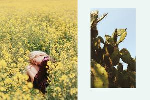 Від рослинних компонентів до зволоження: чотири головні б'юті-тренди
