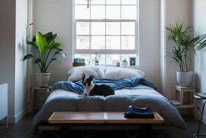 Як зробити маленьку квартиру великою: 15 лайфхаків від дизайнера інтер'єру