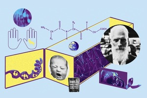 Як жити довго та щасливо: пояснюють науковці
