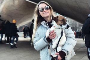 «Вхід із тваринами заборонено». Як поїхати у відпустку з собакою чи котом