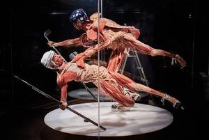 Виставка справжніх людських тіл уперше в Києві. Це інтерв'ю з її кураторкою
