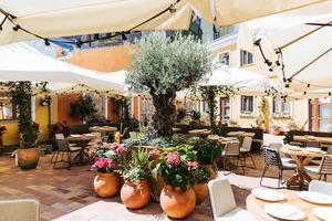 Ресторан Il Riccio з «італійським двориком» на Подолі