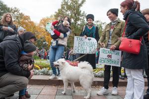 Вийди за мене: учасники Маршу за права тварин у Києві