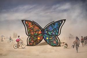 На Burning Man 2019 везуть українського метелика: що треба знати про Catharsis