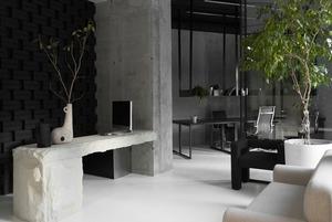 Трембіти і лекторій в офісі Yakusha Design і Faina